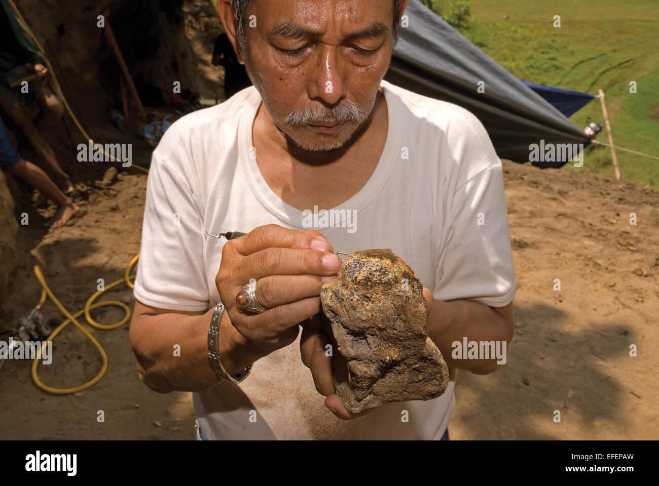 Recherche professeur de paléontologie, Fachroel Aziz, travaillant sur le site d'excavation. Photo Stock