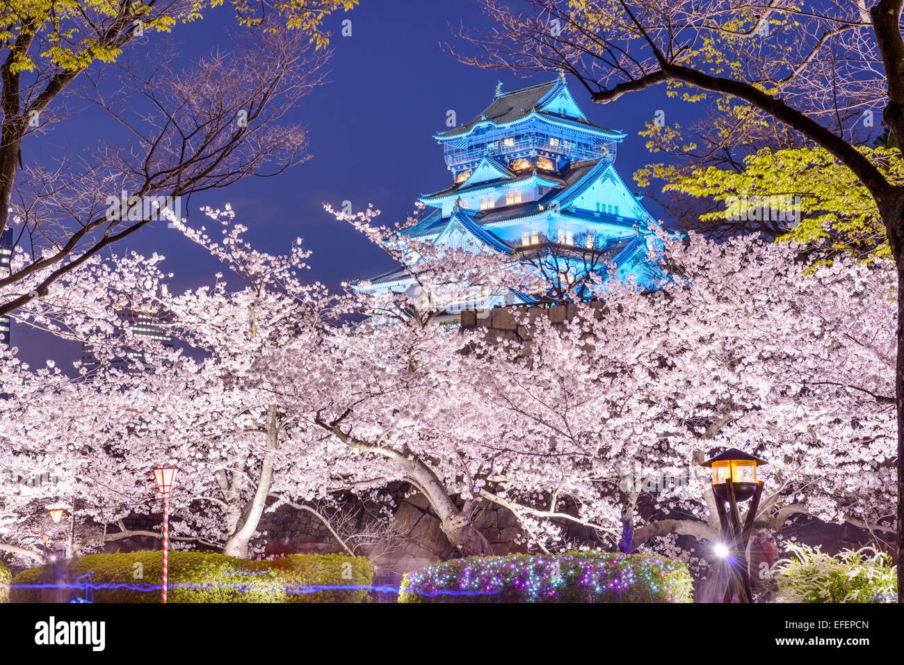 Osaka, Japon à Osaka, château avec des fleurs de cerisiers. Photo Stock