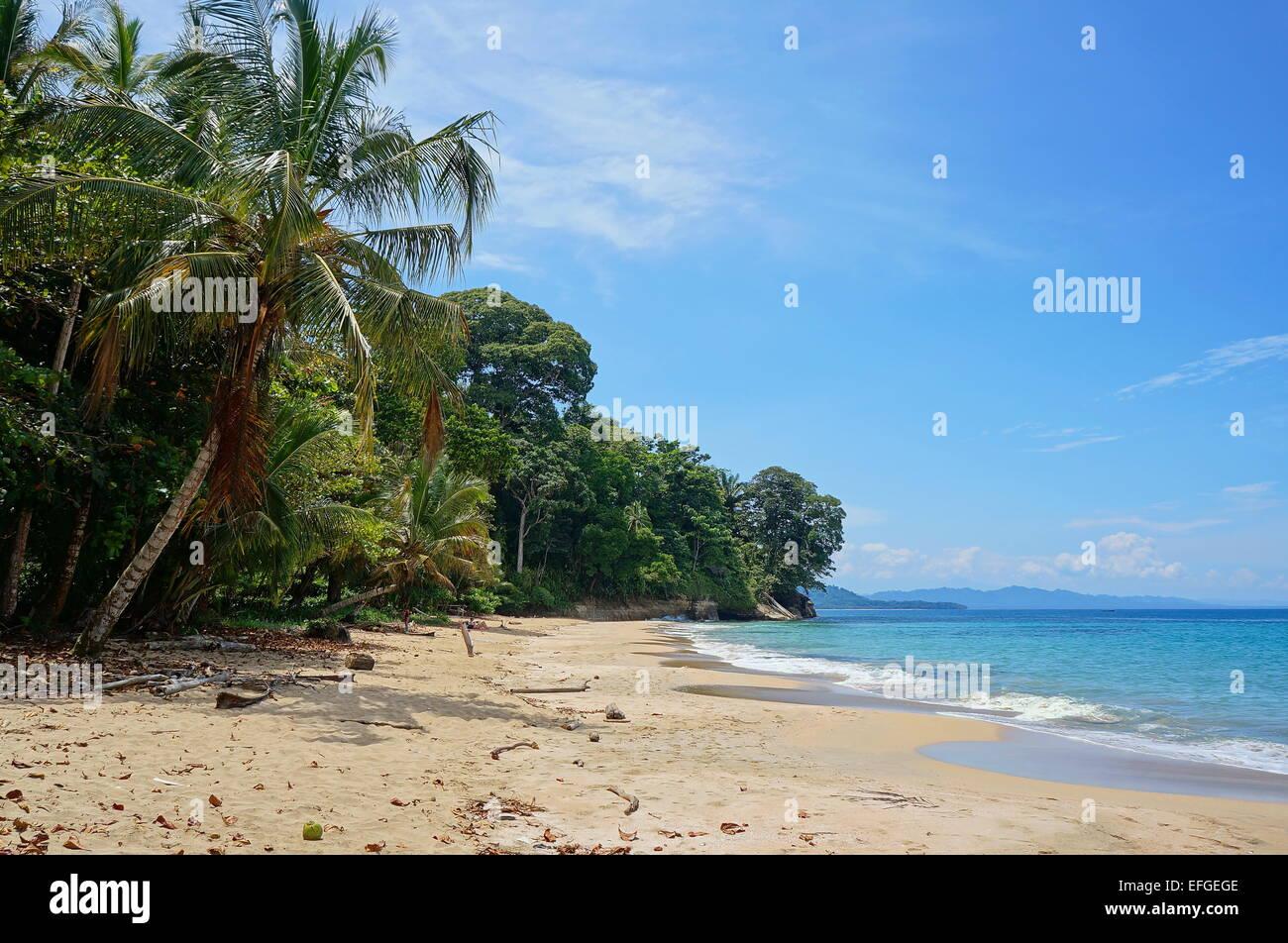 Plage des Caraïbes avec la végétation tropicale luxuriante au Costa Rica, Punta Uva, Puerto Viejo Photo Stock
