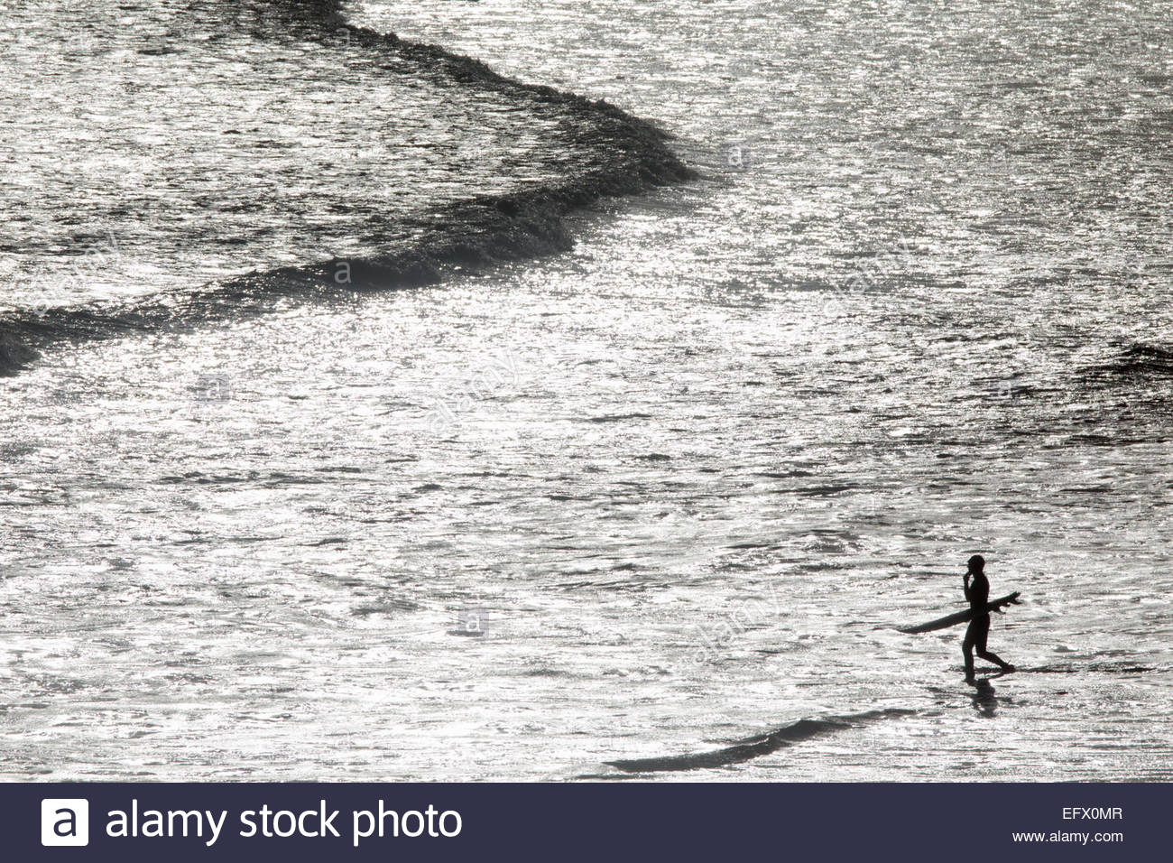 Surfer carrying surf board, pataugeant dans la mer Photo Stock