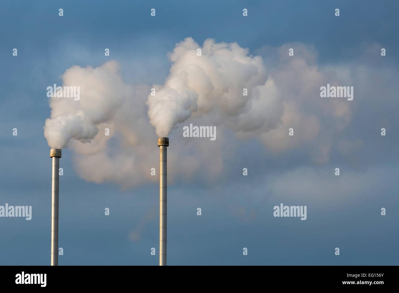 La vapeur provenant de l'énergie géothermique, l'énergie propre Photo Stock