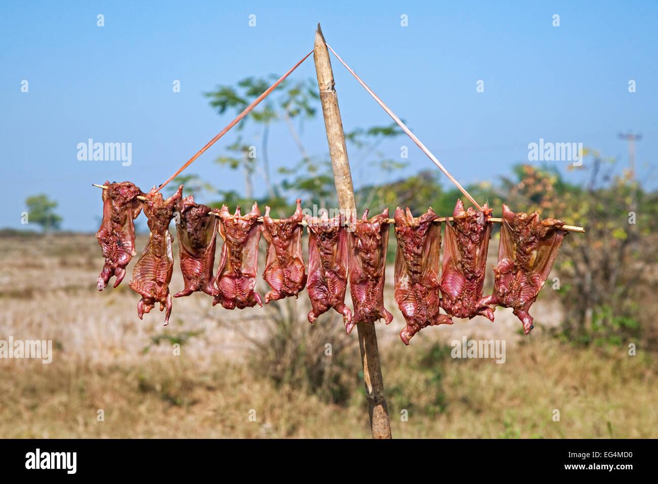 Avaler les carcasses séchant au soleil, la viande utilisée comme nourriture dans la cuisine locale, région Photo Stock