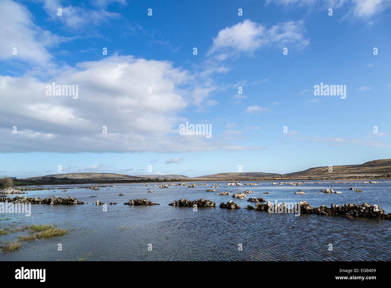 Carran Turlough champs inondés en saison, le Burren, comté de Clare, Irlande Photo Stock