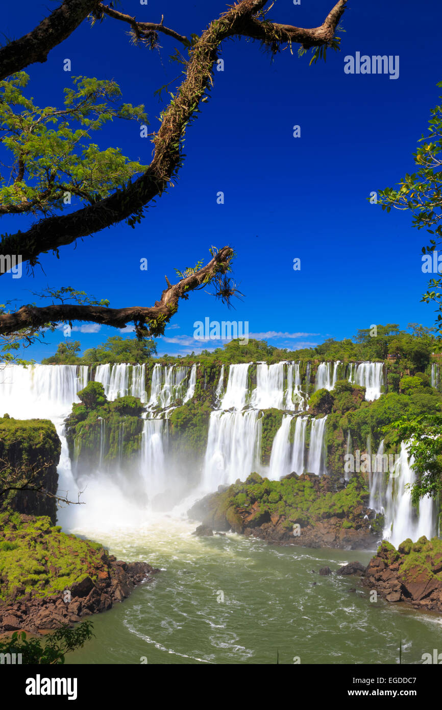 L'Argentine, Iguazu Falls National Park, (UNESCO Site) Photo Stock