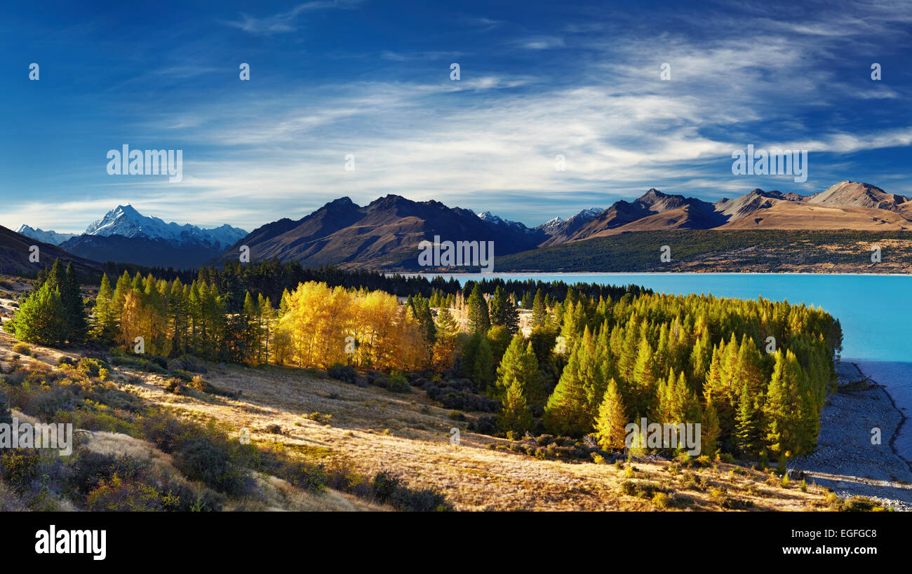 Le lac Pukaki et le Mont Cook, Nouvelle-Zélande Photo Stock
