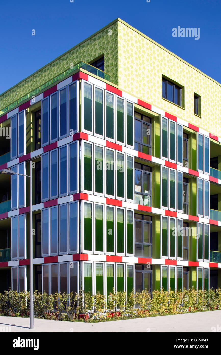 BIQ immeuble résidentiel avec façade de la photosynthèse pour la production d'énergie, d'algues, Photo Stock