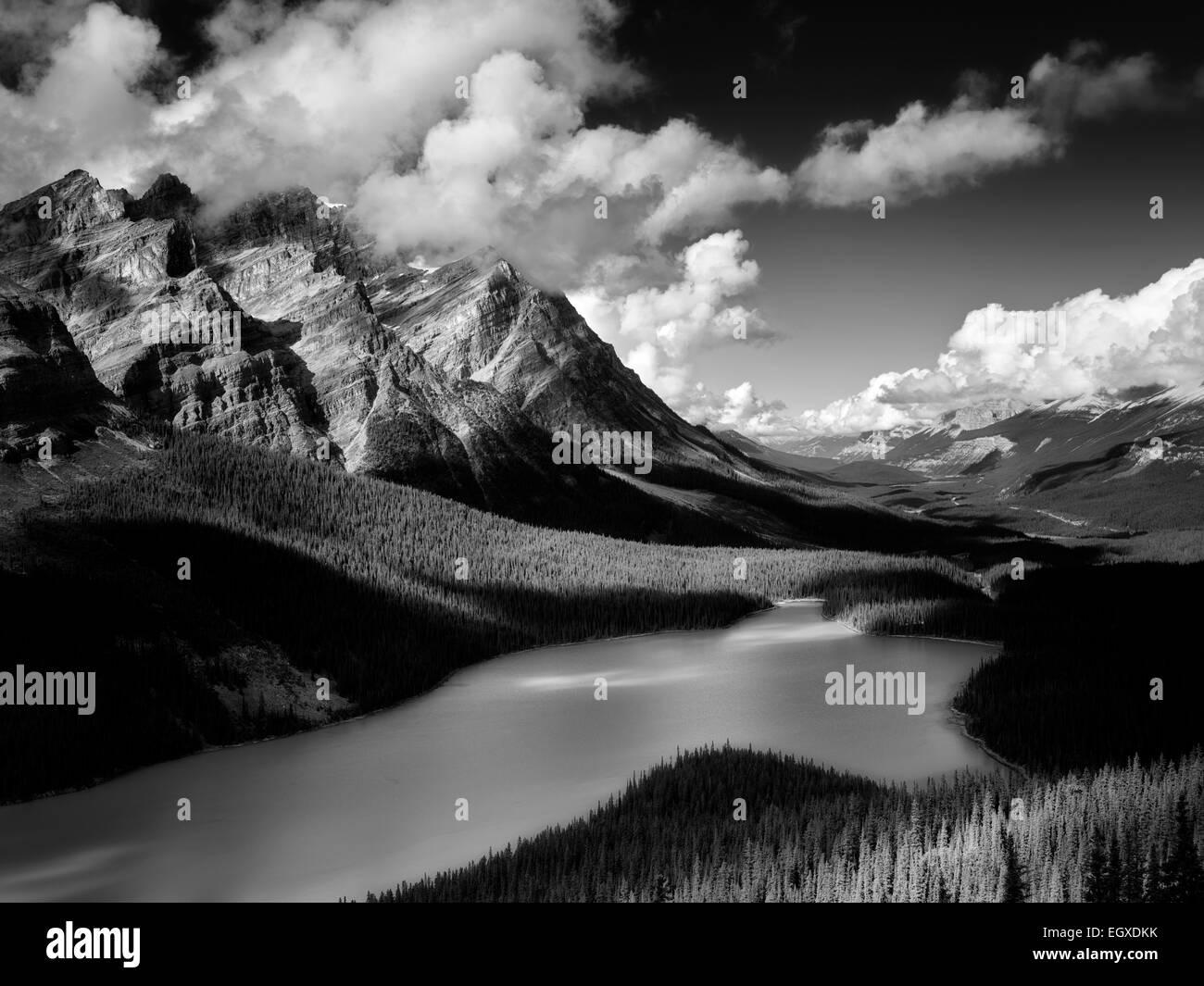 Le lac Peyto. Le parc national Banff. L'Alberta. Le Canada. Photo Stock