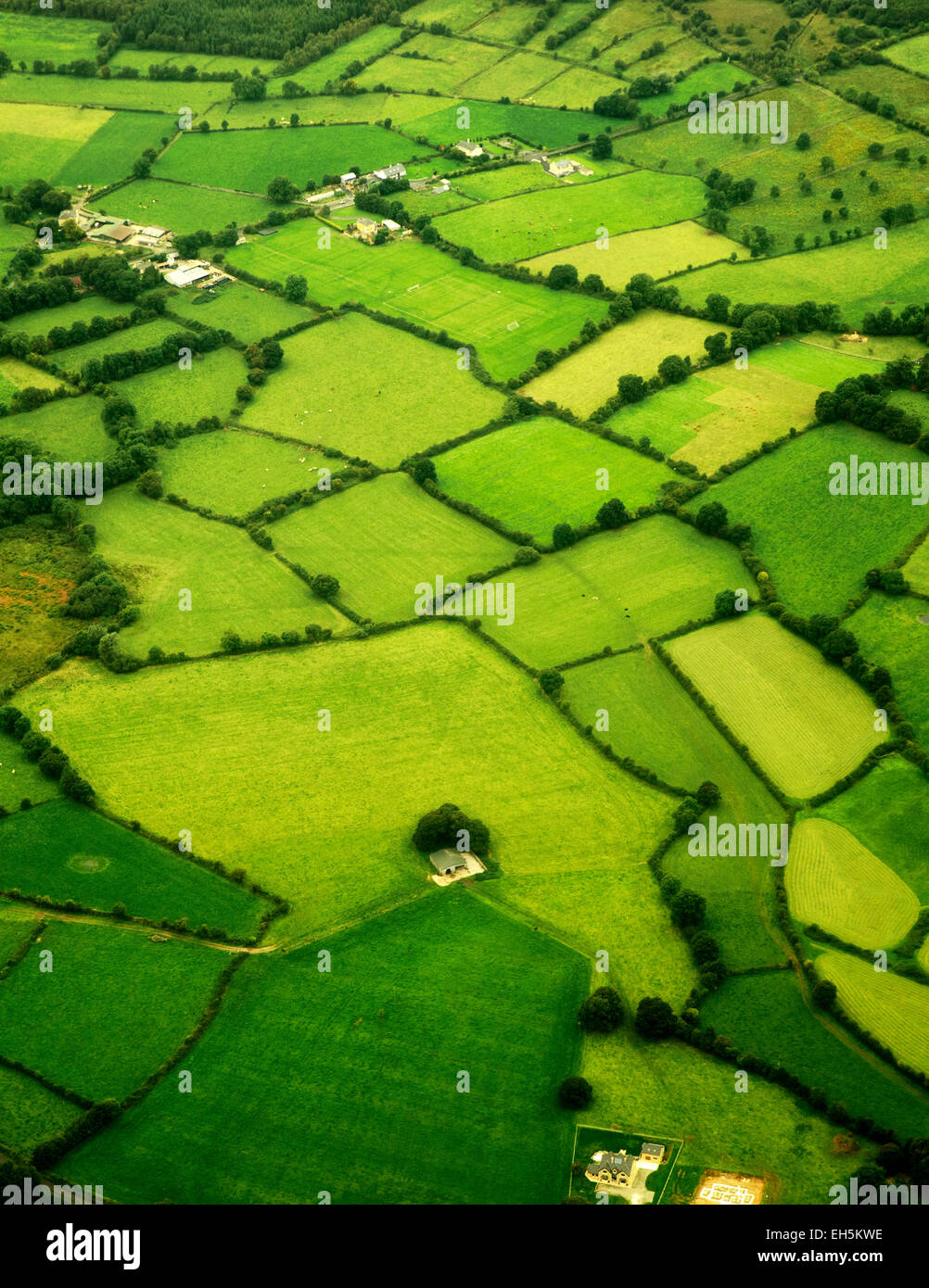 Les verts pâturages comme vu de l'air. L'Irlande Photo Stock
