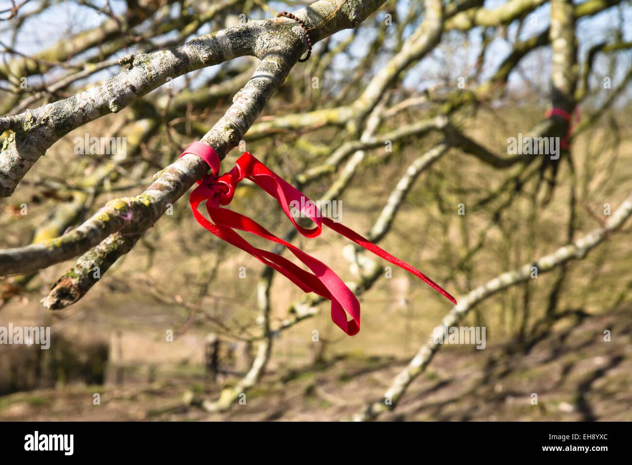 Avebury Wiltshire Angleterre un cercle en pierre comprend ce petit village du Wiltshire un chiffon attaché à un arbre, pour faire un voeu, Banque D'Images