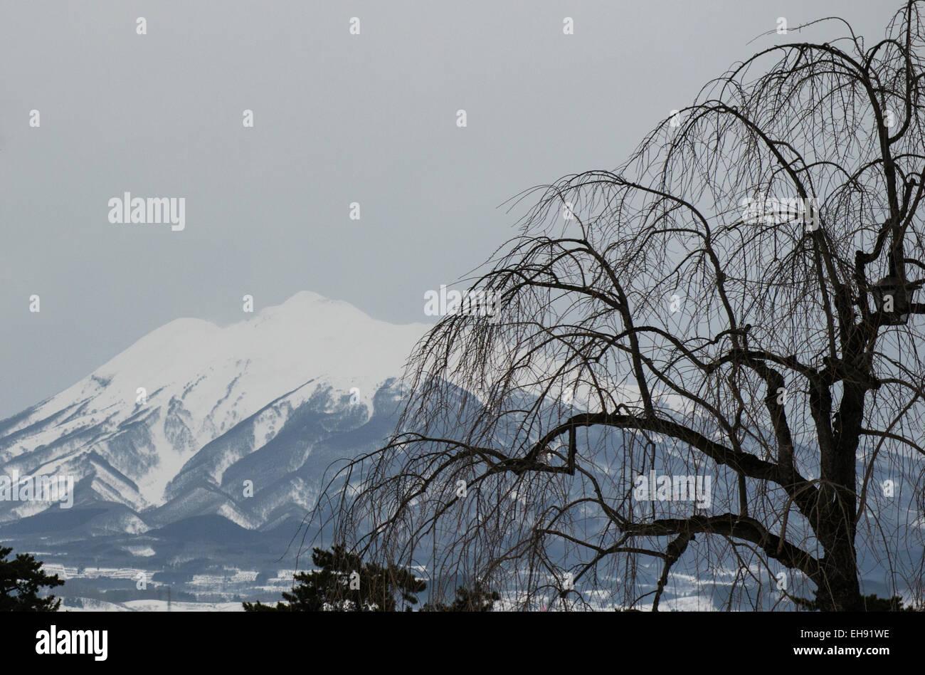 Le mont Iwaki Iwaki (SAN) de la préfecture d'Aomori, Tohoku, Japon. Photo Stock