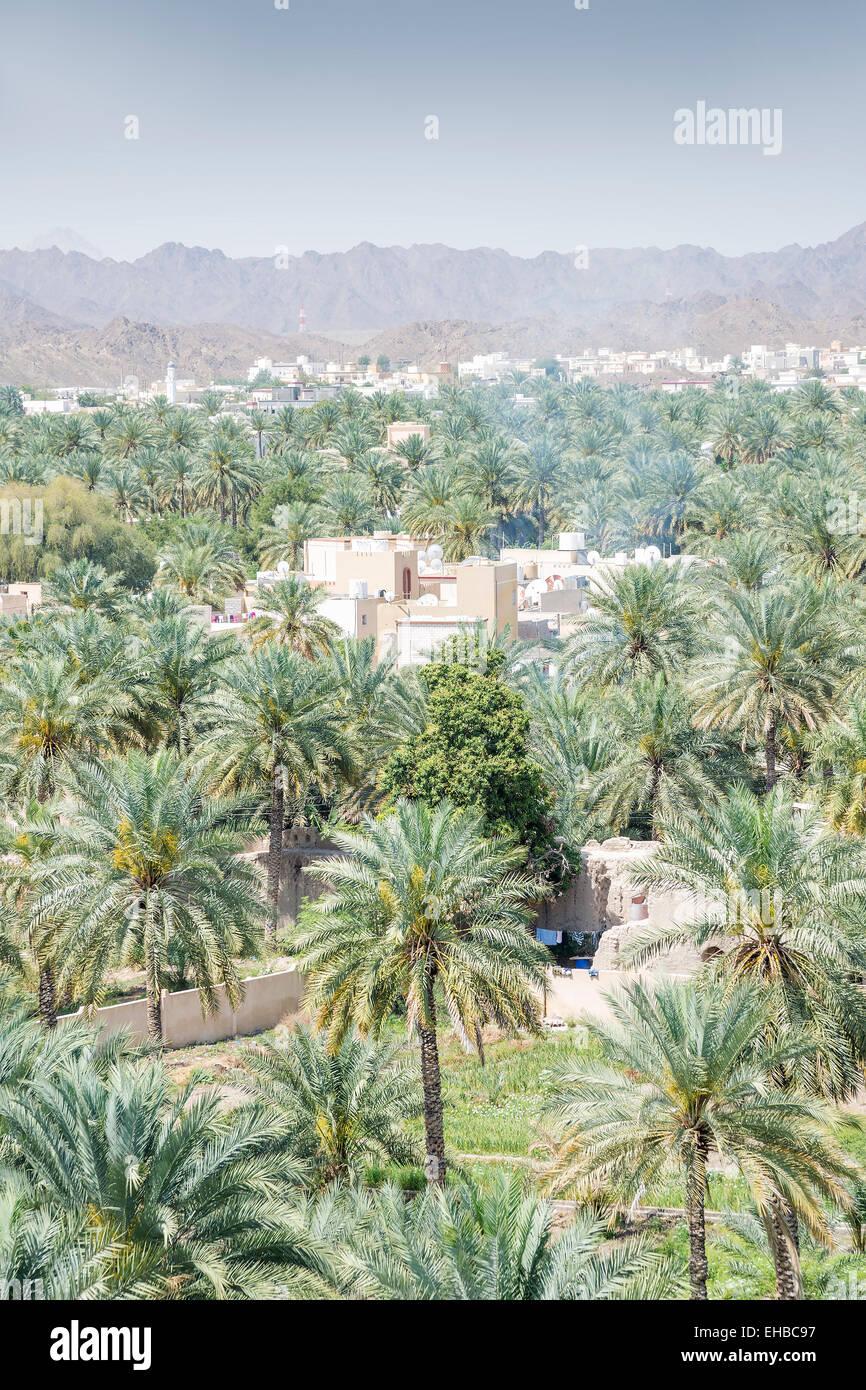 Vue du fort aux bâtiments et des palmiers de la ville Nizwa, Oman Photo Stock