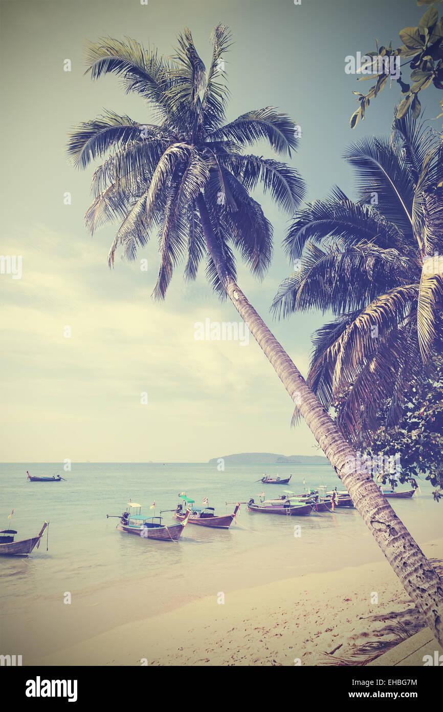Tons Vintage palmiers sur une plage, l'arrière-plan d'été. Photo Stock