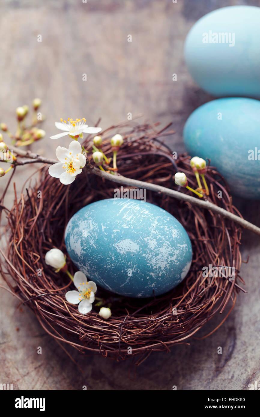 Oeufs de Pâques bleu dans un nid Photo Stock