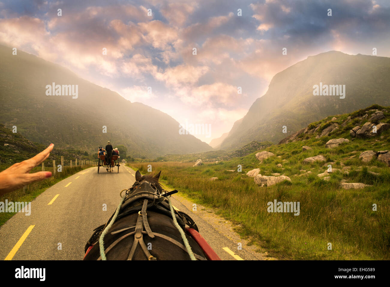 Jaunting à cheval sur la voiture avec la main montrant le chemin. Gap of Dunloe, Irlande Photo Stock