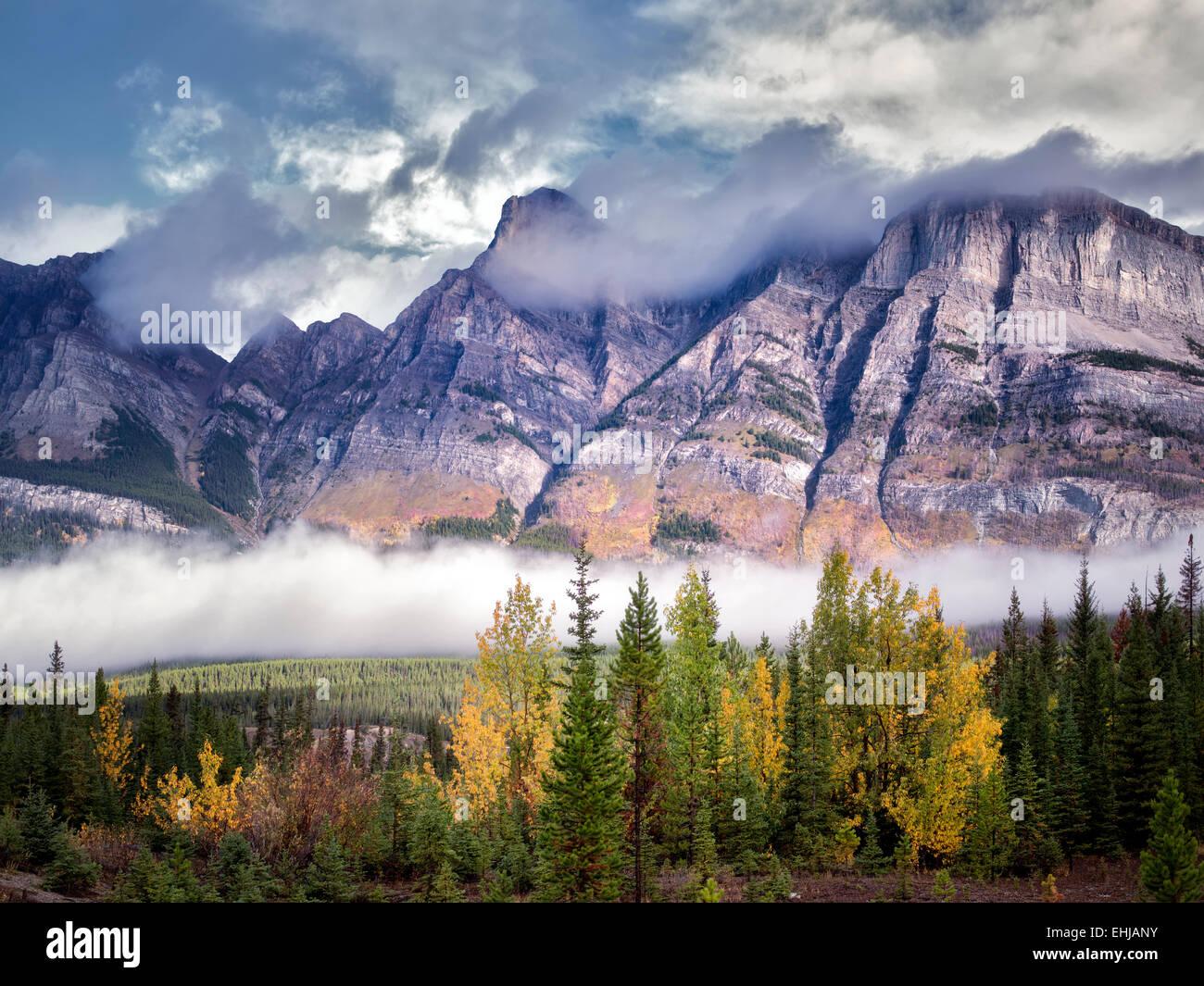 Le brouillard et les nuages bas aux couleurs de l'automne. Le parc national Banff. L'Alberta, Canada Photo Stock