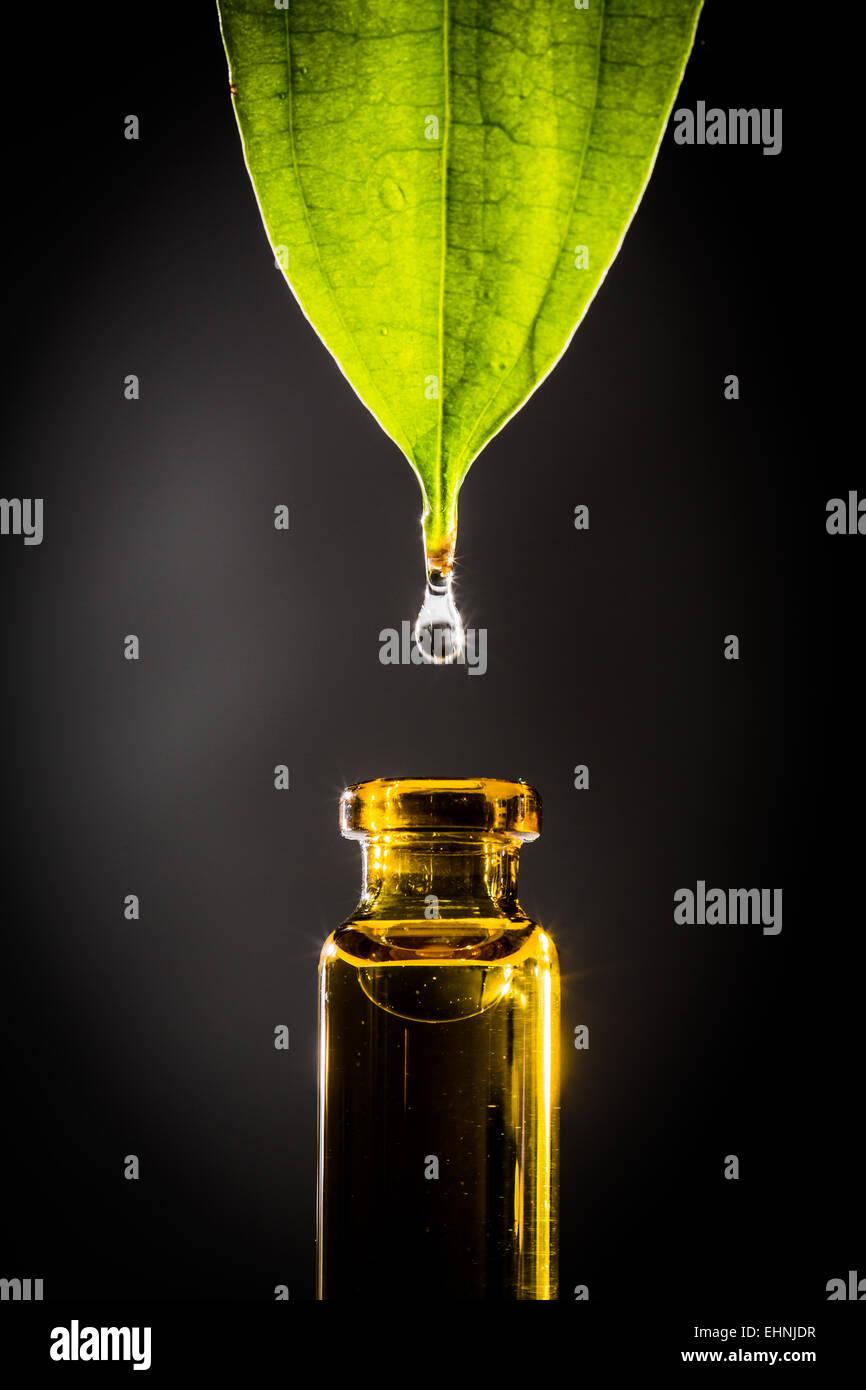 Phytothérapie concept. Photo Stock