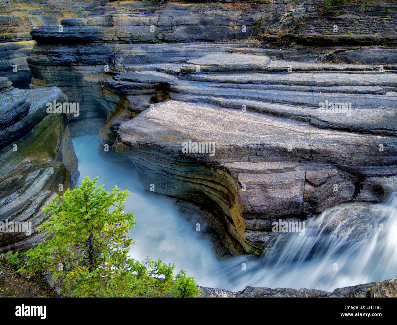 En cours d'Mystiya Canyon. Le parc national Banff, Alberta, Canada Photo Stock