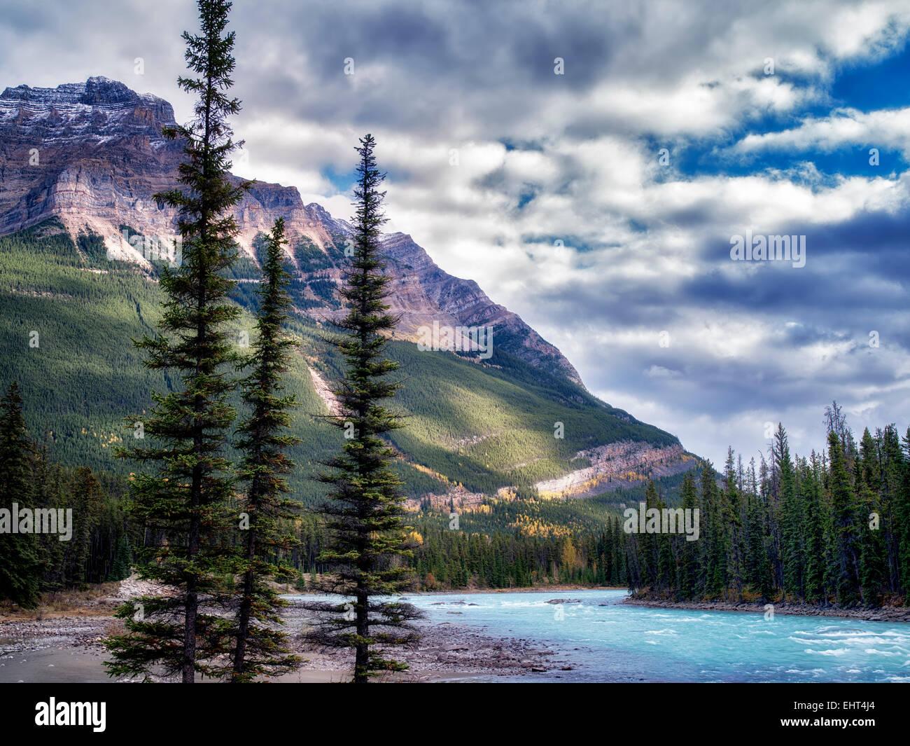 Athebasca rivière et montagne. Le Parc National Jasper, Alberta, Canada Photo Stock