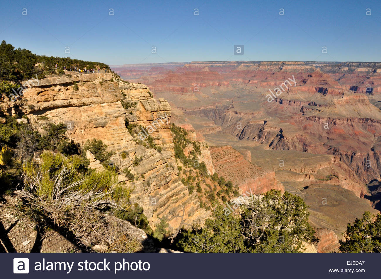 Le Grand Canyon à Mather Point, Grand Canyon Village, Arizona, USA Photo Stock
