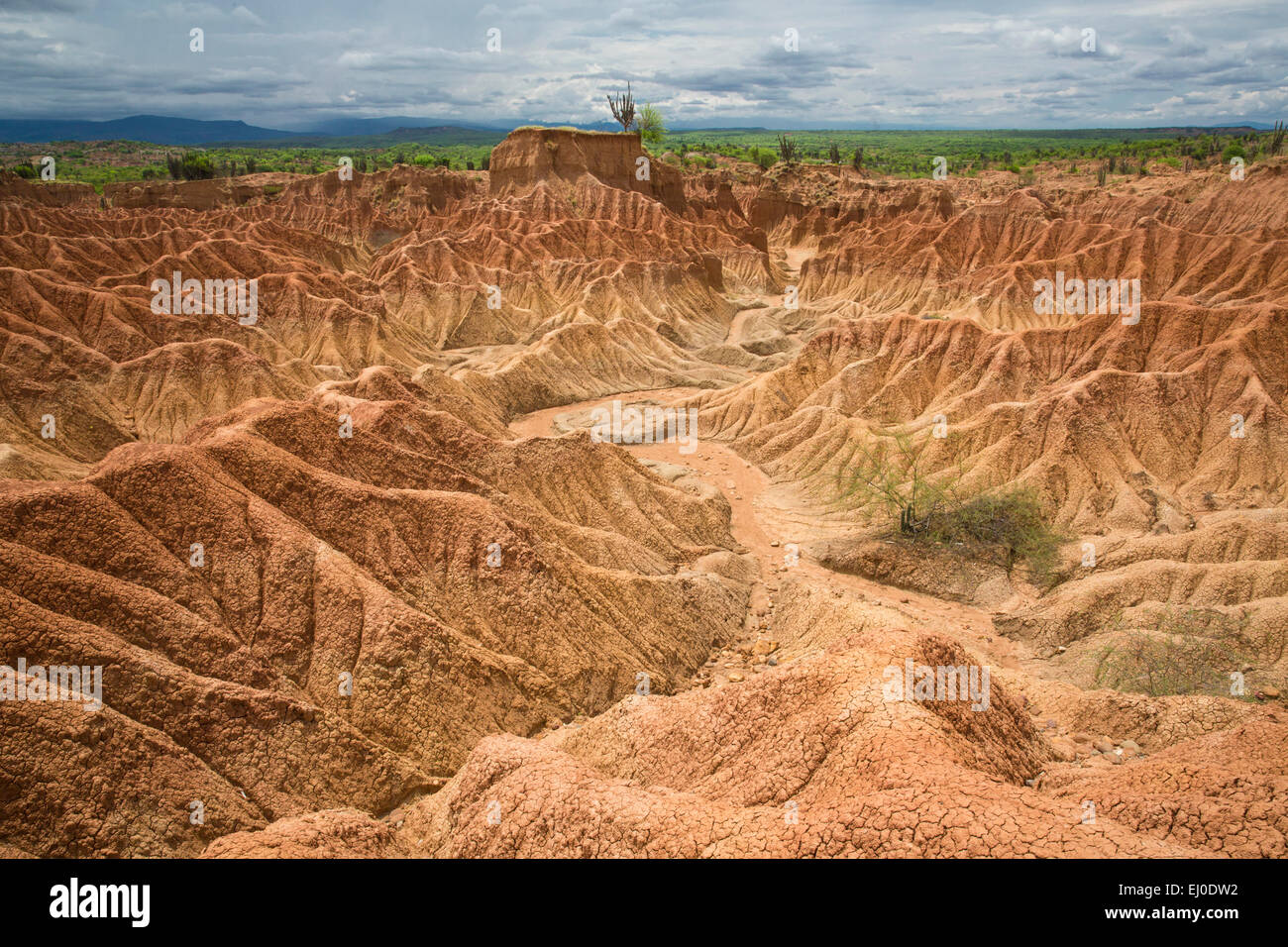 Amérique du Sud, Amérique latine, Colombie, nature, Tatacao, désert, des formations rocheuses, Huila, Photo Stock