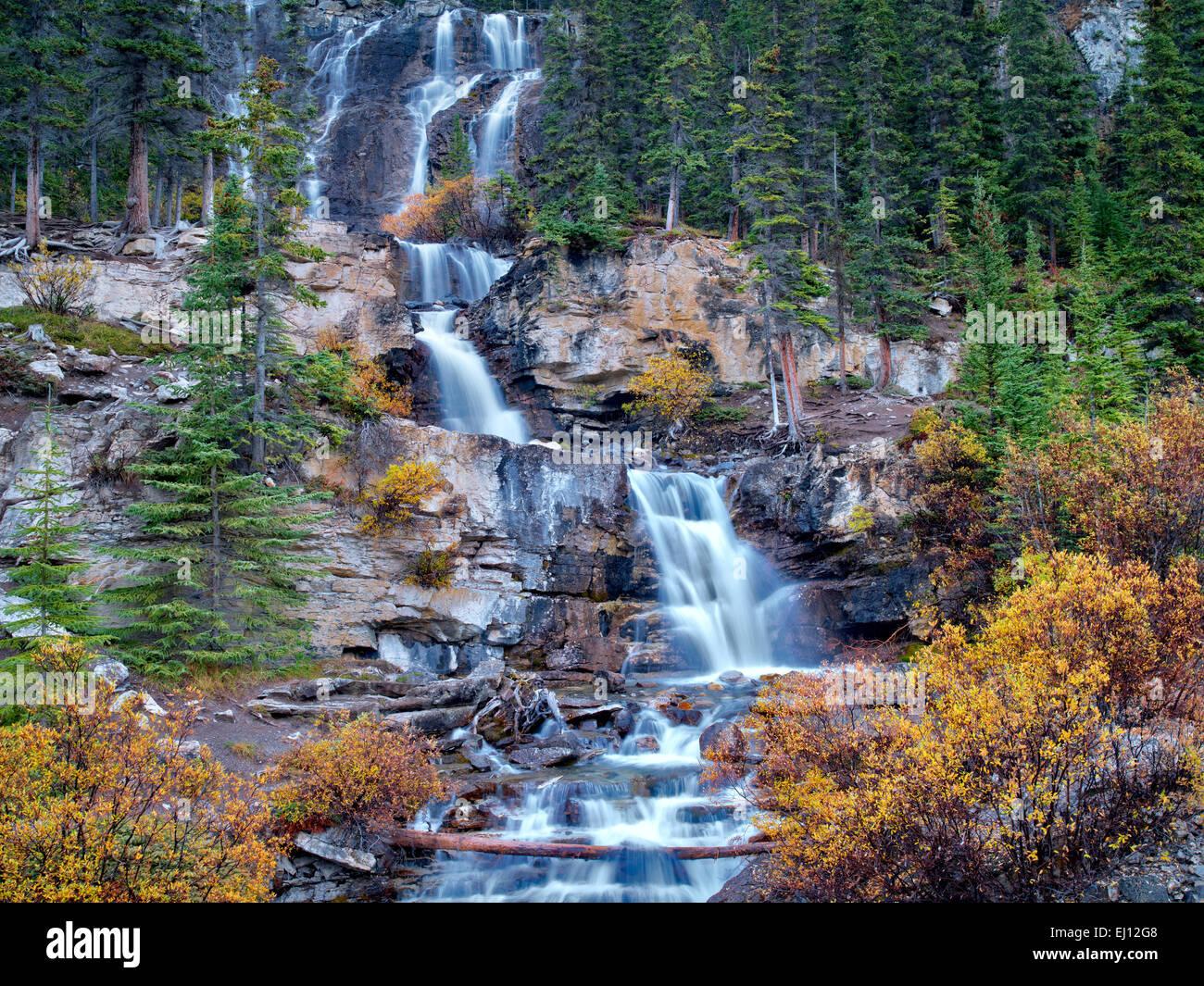 Chutes Tangle couleur d'automne avec des saules. Le Parc National Jasper, Alberta, Canada Photo Stock