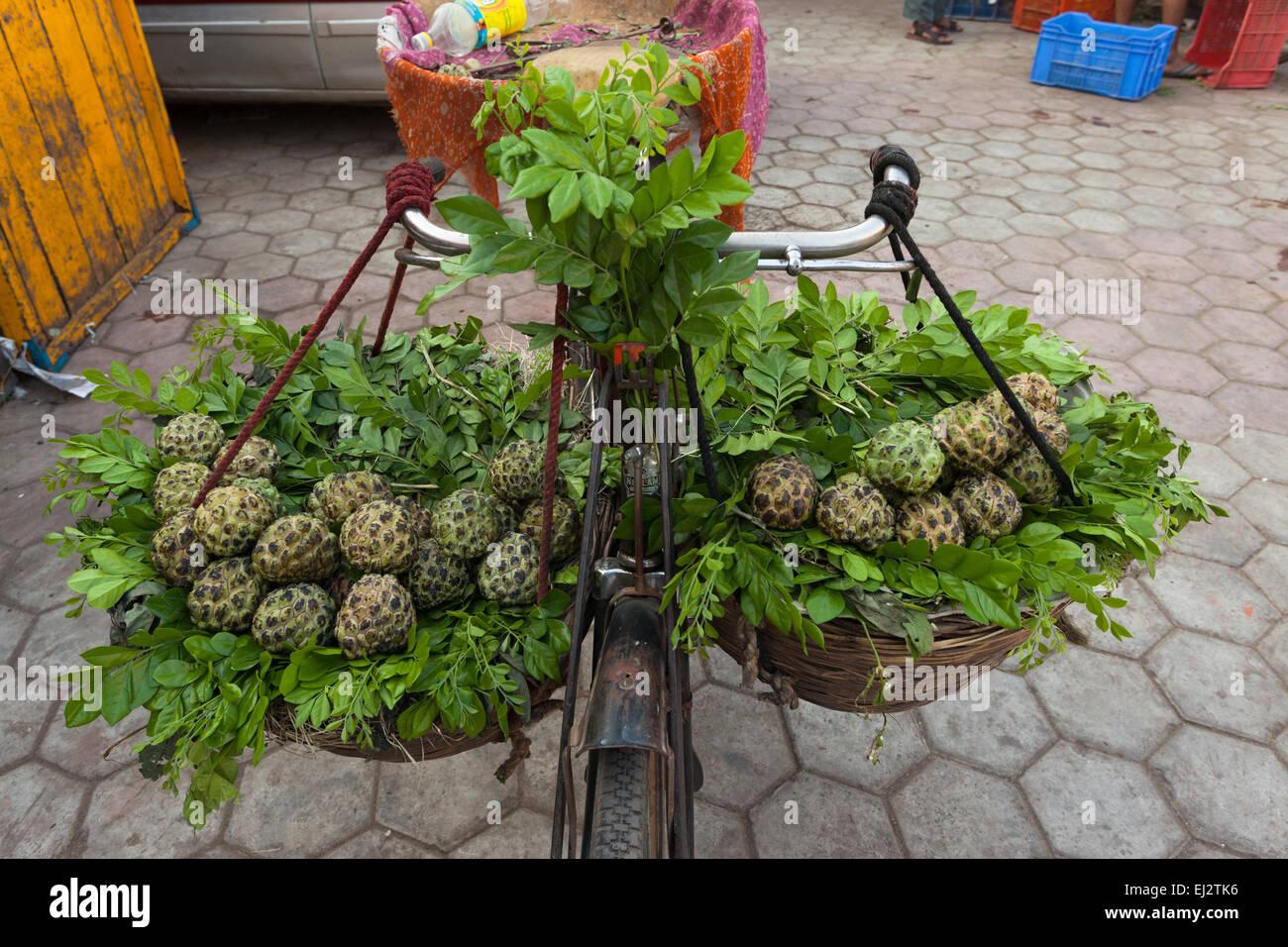 Location d'un vendeur de fruits vente de l'anone. Photo Stock