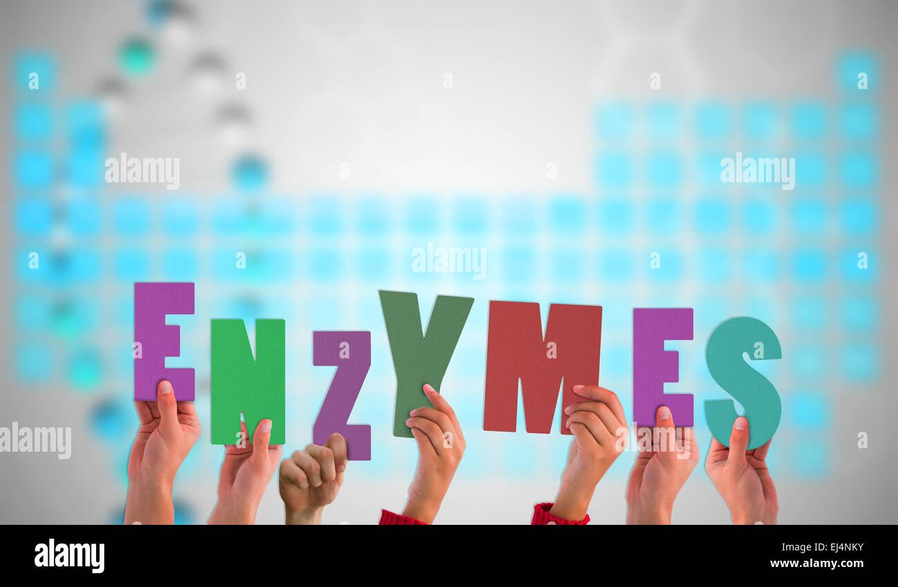 Image composite de mains tenant des enzymes de Photo Stock