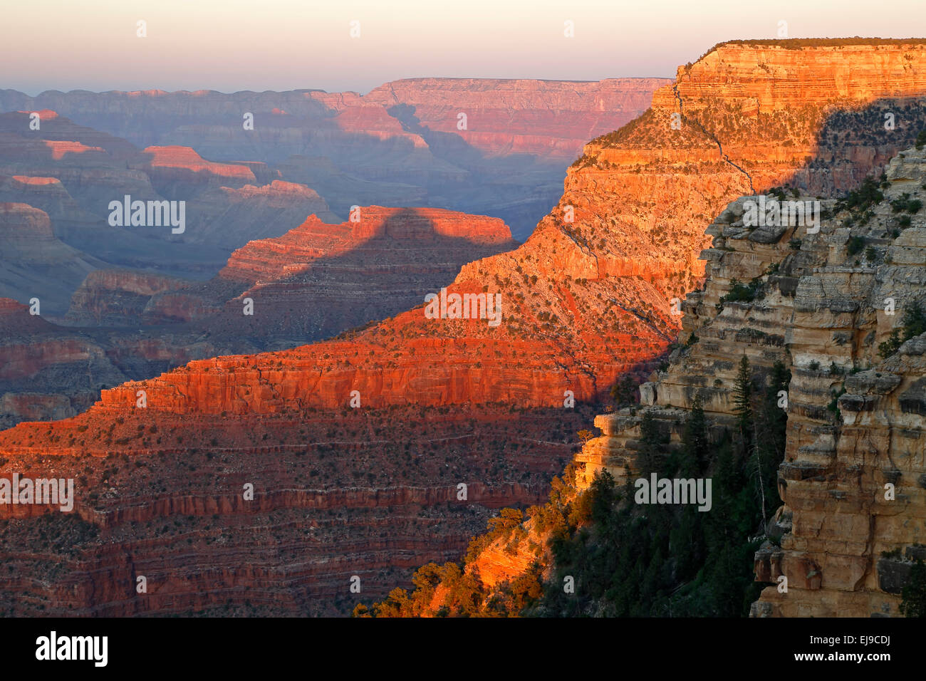 Des formations rocheuses du canyon de près de Yavapai Point, le parc national du grand canyon, arizona usa Photo Stock