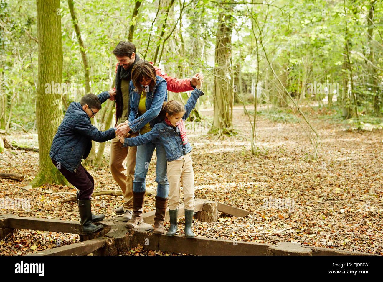 Bois de hêtre à l'automne. Une famille de quatre personnes se tenant la main et marcher le long des Photo Stock