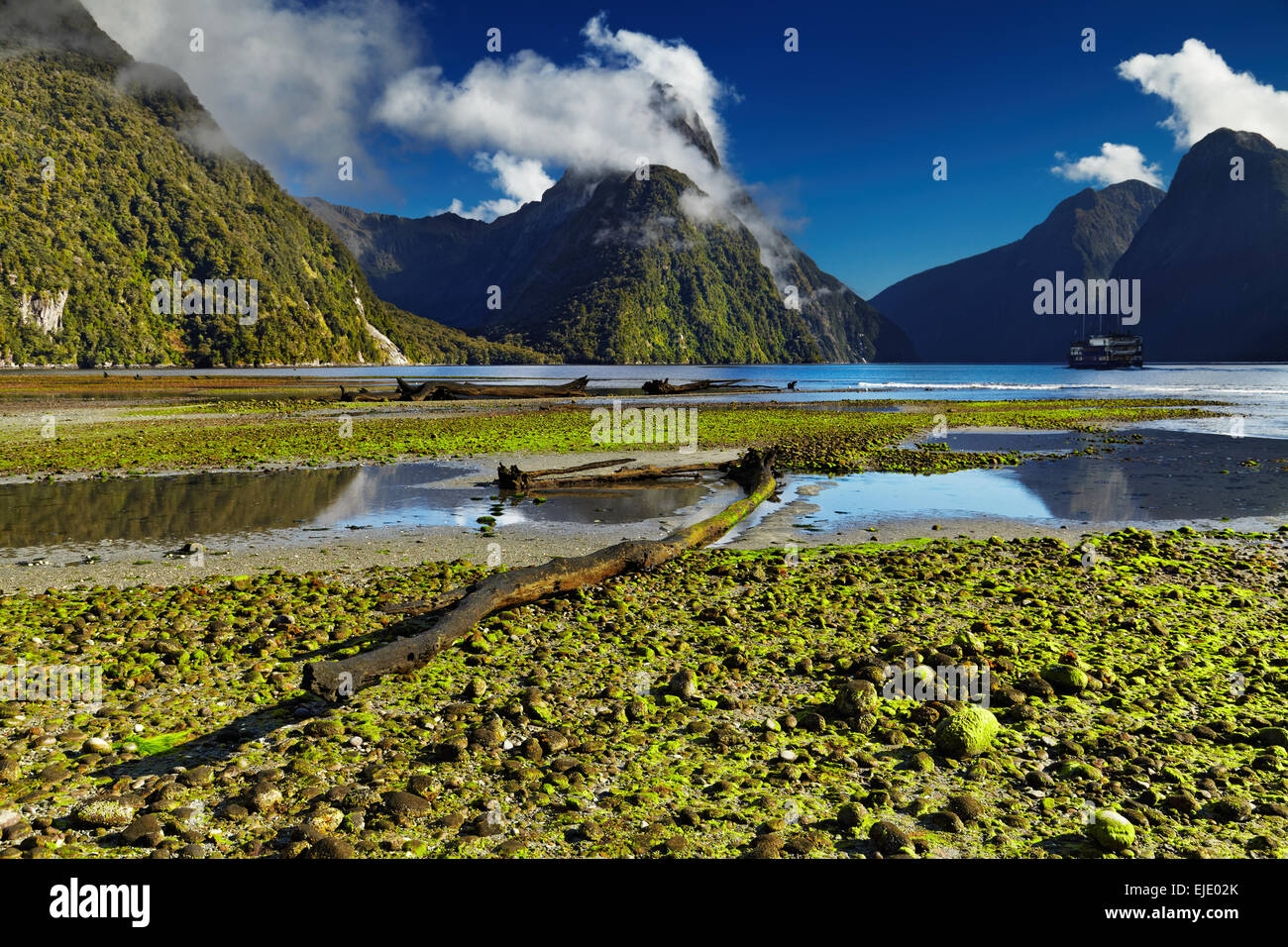 Milford Sound, île du Sud, Nouvelle-Zélande Photo Stock