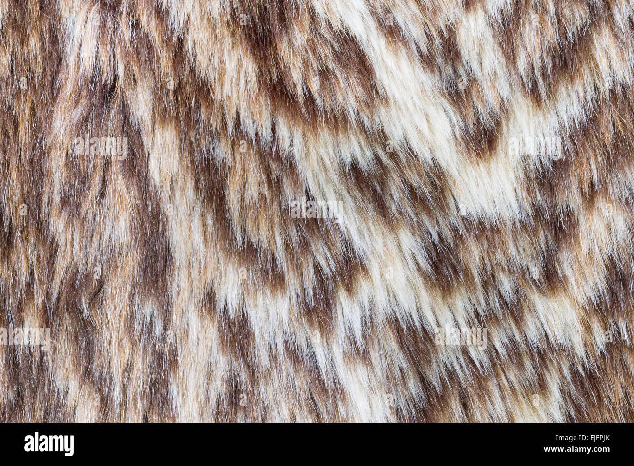 Wildcat brun ou Fourrure Léopard guépard ou la texture pour la conception. Banque D'Images
