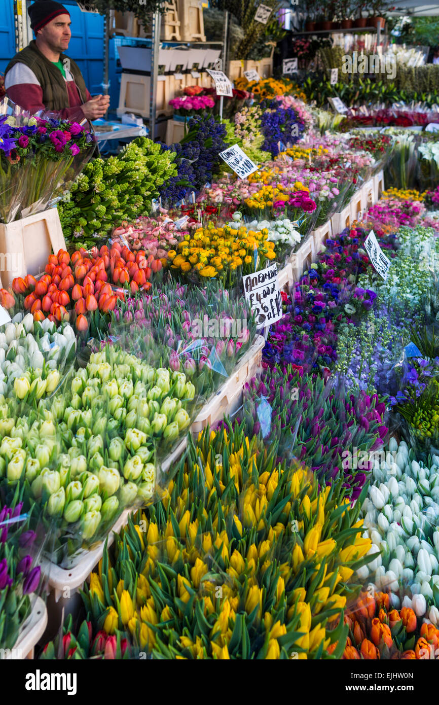 Cale et fleurs à Columbia Road Flower Market, Londres, Angleterre Photo Stock