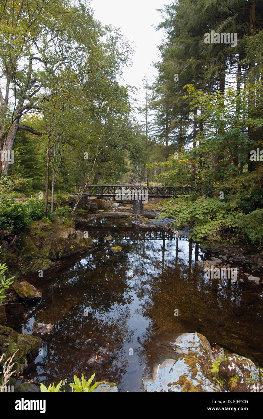 L'un des 16 ponts sur la rivière Shimna à Tollymore Forest Park, l'Irlande du Nord Banque D'Images