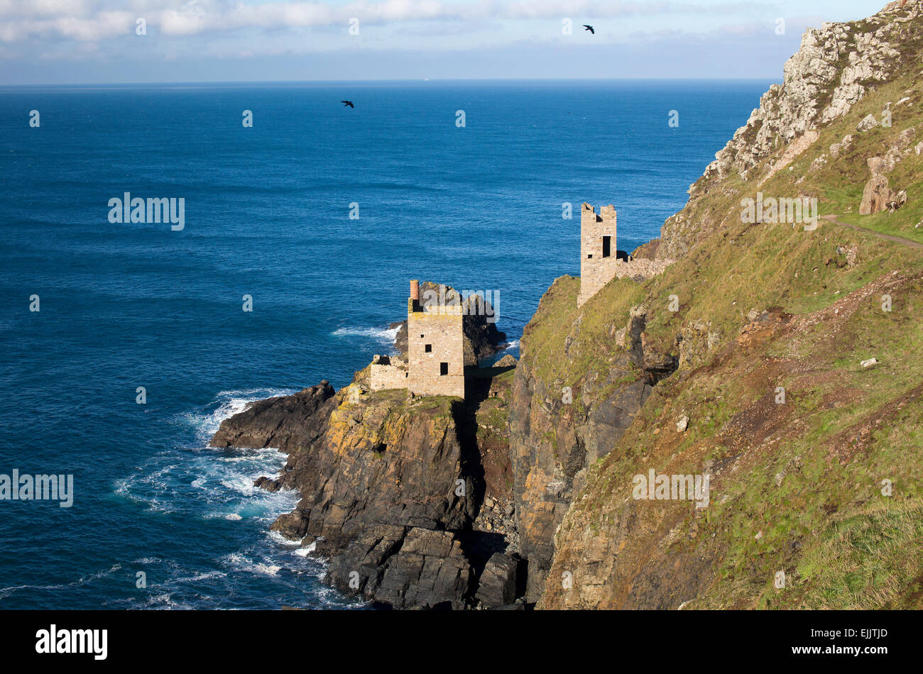 Les couronnes, tin mine près de enginehouses Botallack, Cornwall, England, UK. Deux Choughs survolant les ruines Photo Stock