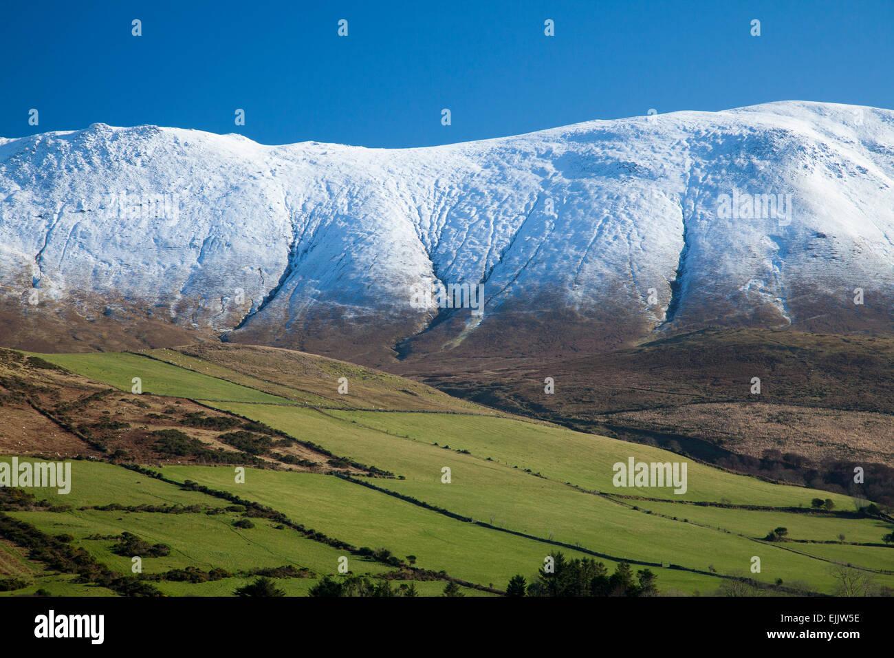 Caherconree montagne en hiver, les montagnes de Slieve Mish, péninsule de Dingle, comté de Kerry, Irlande. Photo Stock