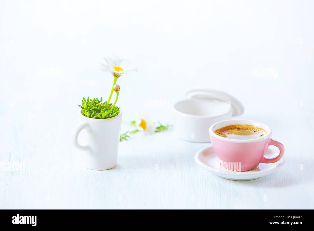 Rose une tasse de café expresso et daisy flower Photo Stock