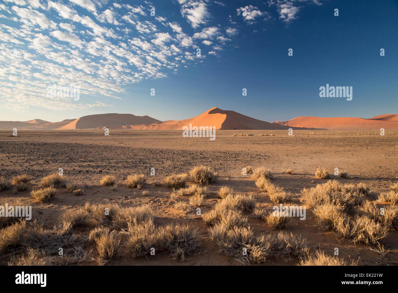 Dans le désert de Namib Namib-Naukluft National Park près de Sossusvlei Namibie Photo Stock