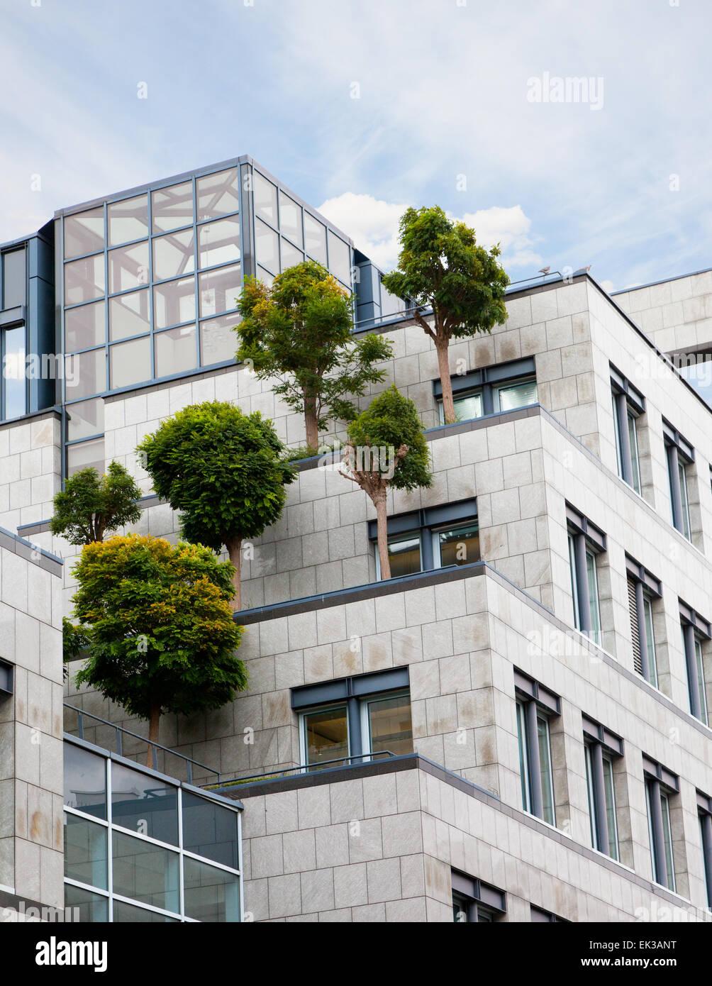 Les arbres croissant sur un toit du centre d'affaires, la solution des problèmes de l'environnement Photo Stock