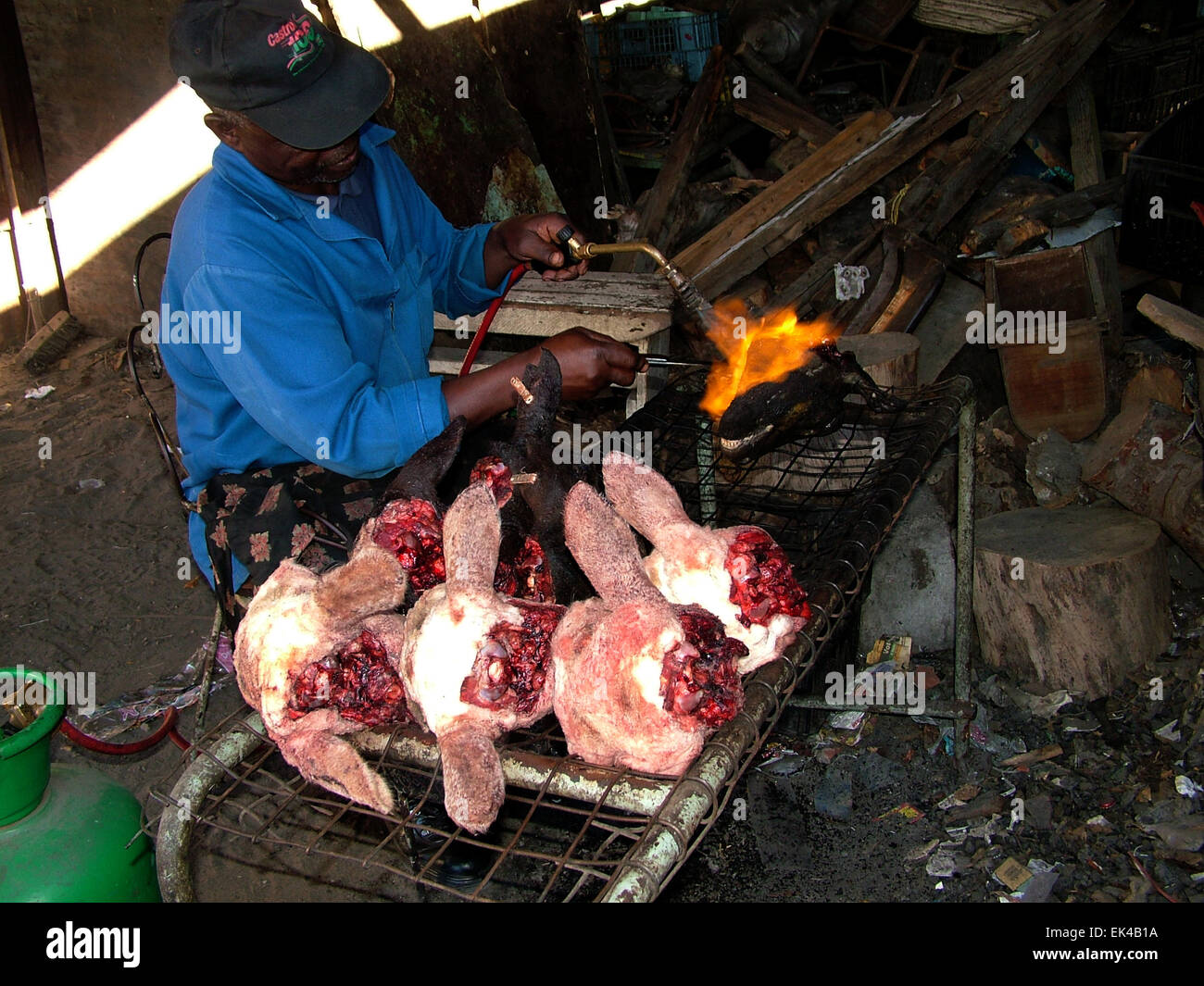 Blow Torch Food Photos Blow Torch Food Images Alamy