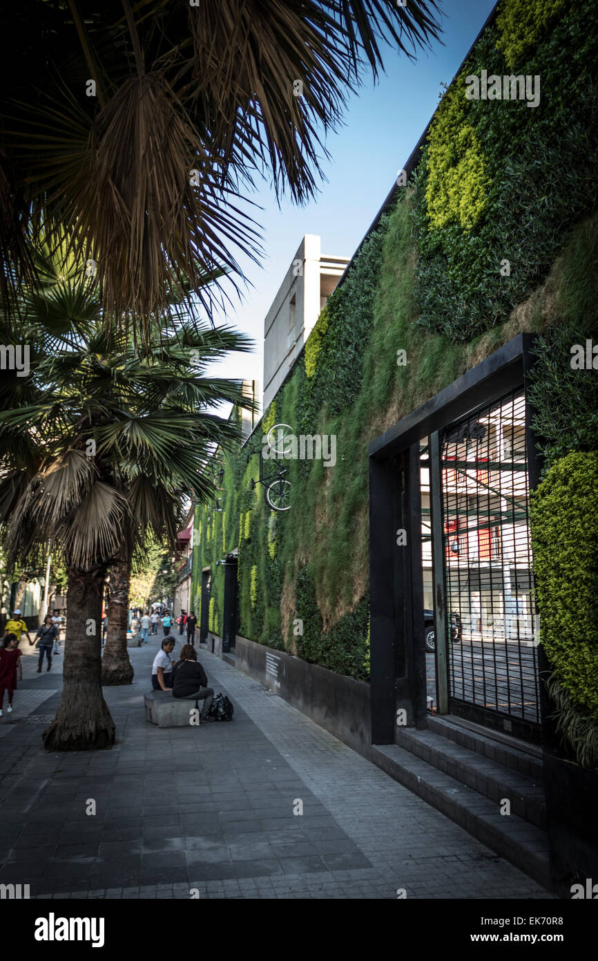 L'architecture contemporaine avec un jardin vertical dans le centre-ville de Mexico Photo Stock