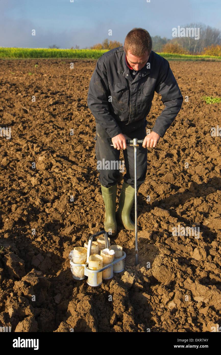 Chercheur d'effectuer test de sol en prenant des échantillons de terre manuel avec champ vide pomme métal Photo Stock