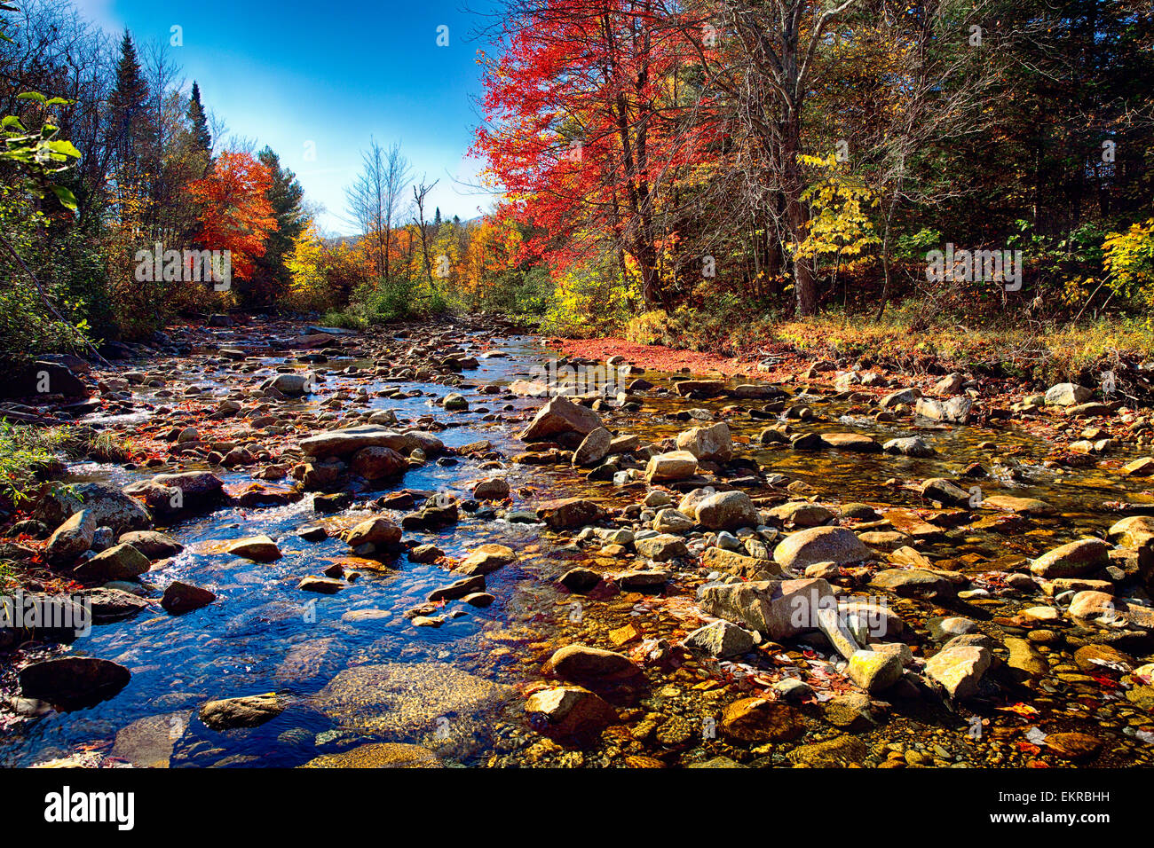 Low Angle View of a Rocky River Bed avec feuillage d'automne, Franconia, New Hampshire, USA Photo Stock