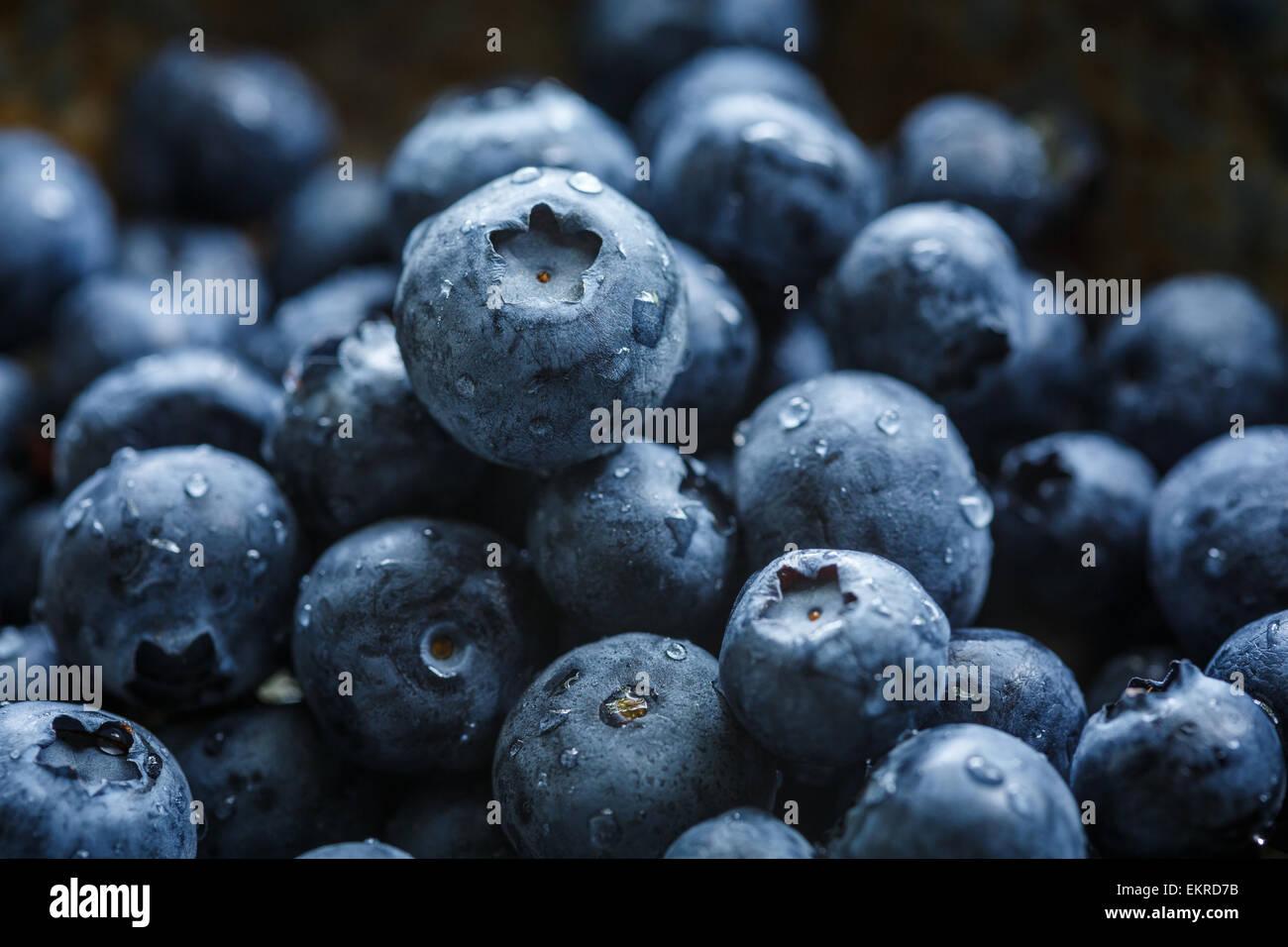 Les bleuets avec de l'eau gouttes Photo Stock