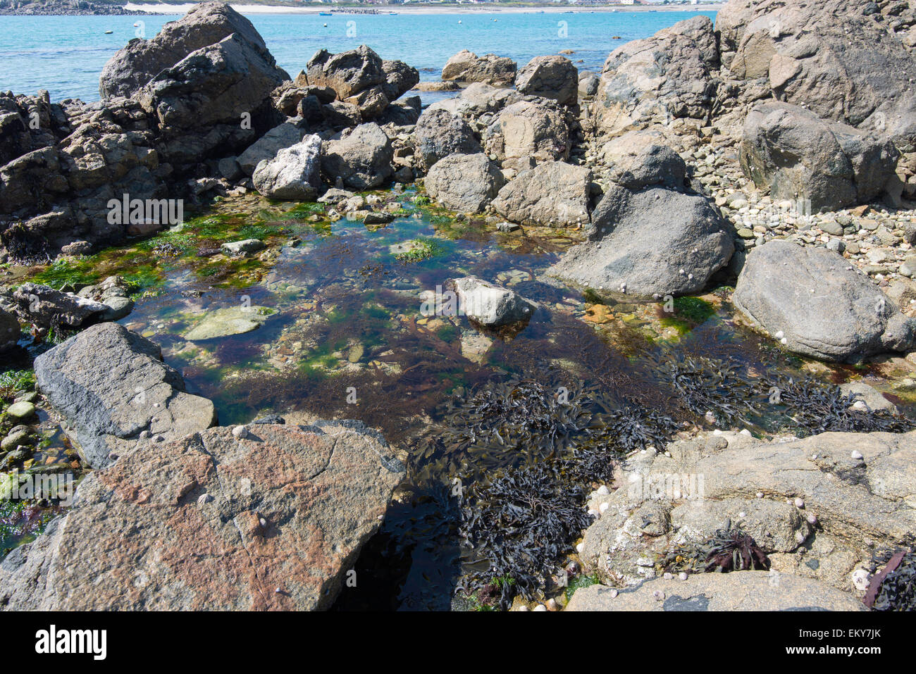 Rock intertidale extérieure. Photo Stock
