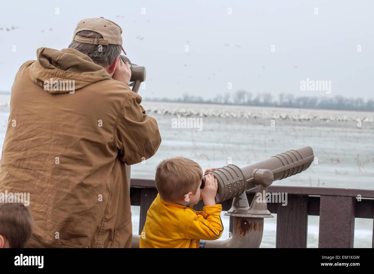 Man and boy regarder dehors les oiseaux au télescope Photo Stock