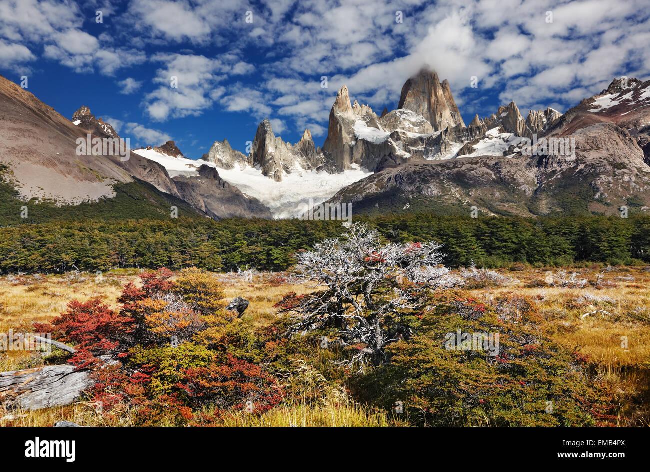 Le mont Fitz Roy, le Parc National Los Glaciares, Patagonie, Argentine Photo Stock