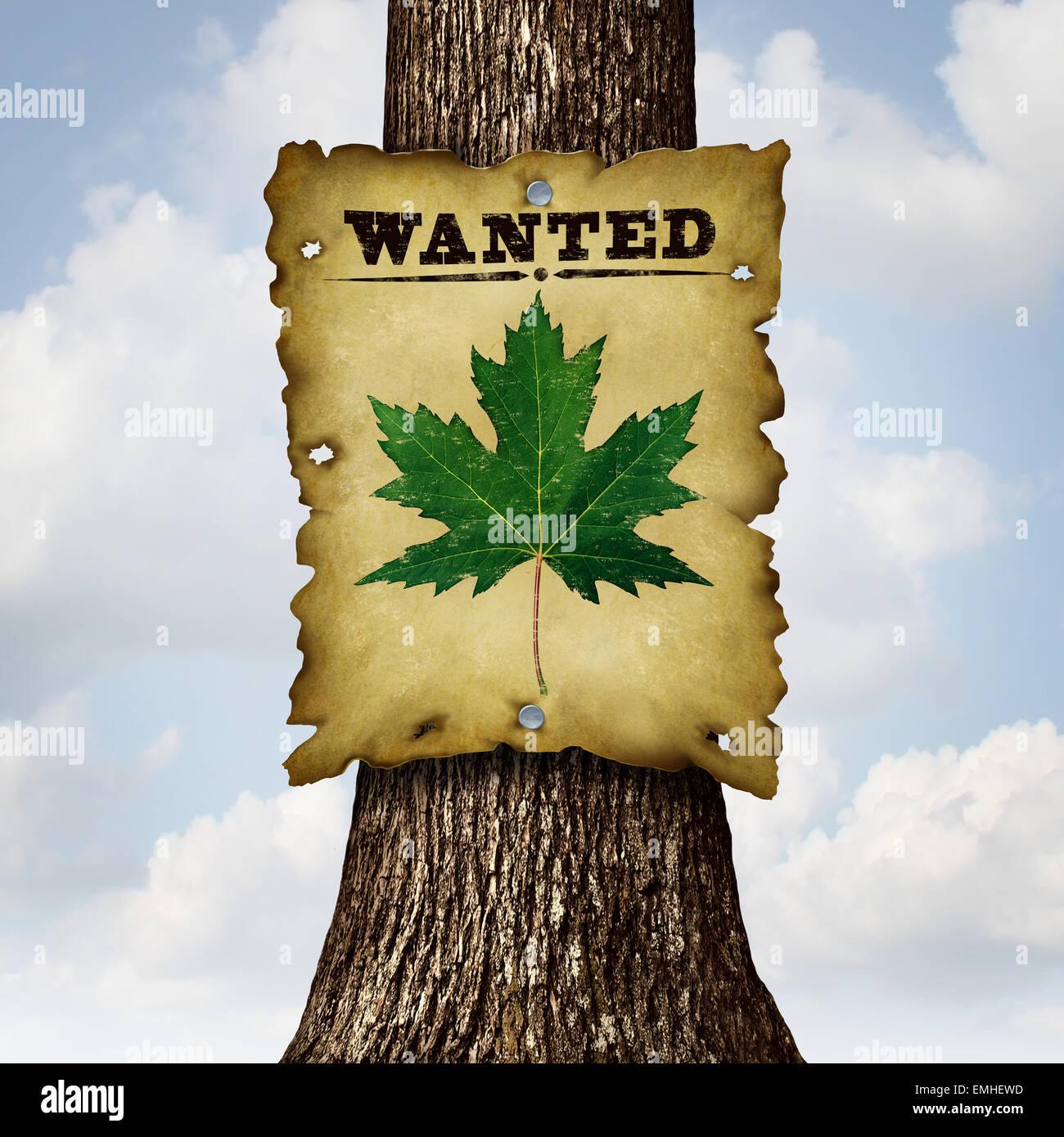 Concept vert respectueux de l'environnement comme un tronc d'arbre et d'un voulait signer avec une feuille Photo Stock