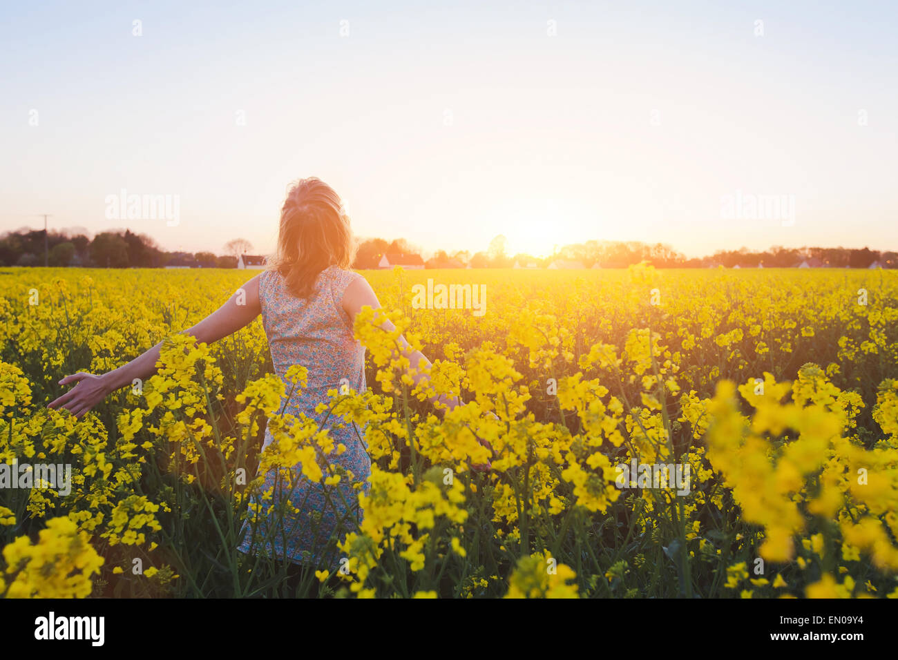 Happy young woman enjoying summer in champ jaune au coucher du soleil Photo Stock
