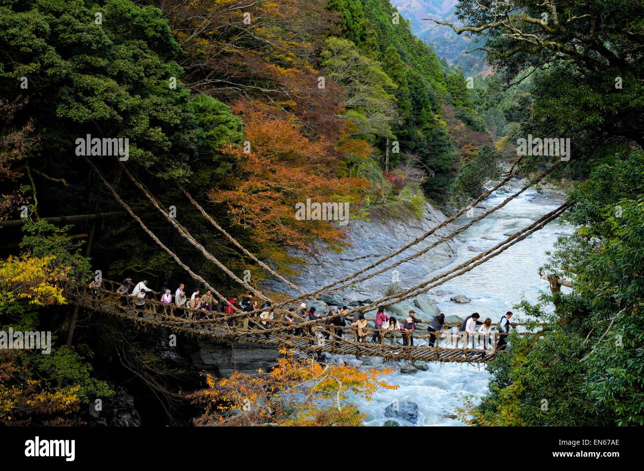 Les Japonais la traversée du célèbre pont de la vigne à Kazurabashi, vallée de l'Iya, Photo Stock