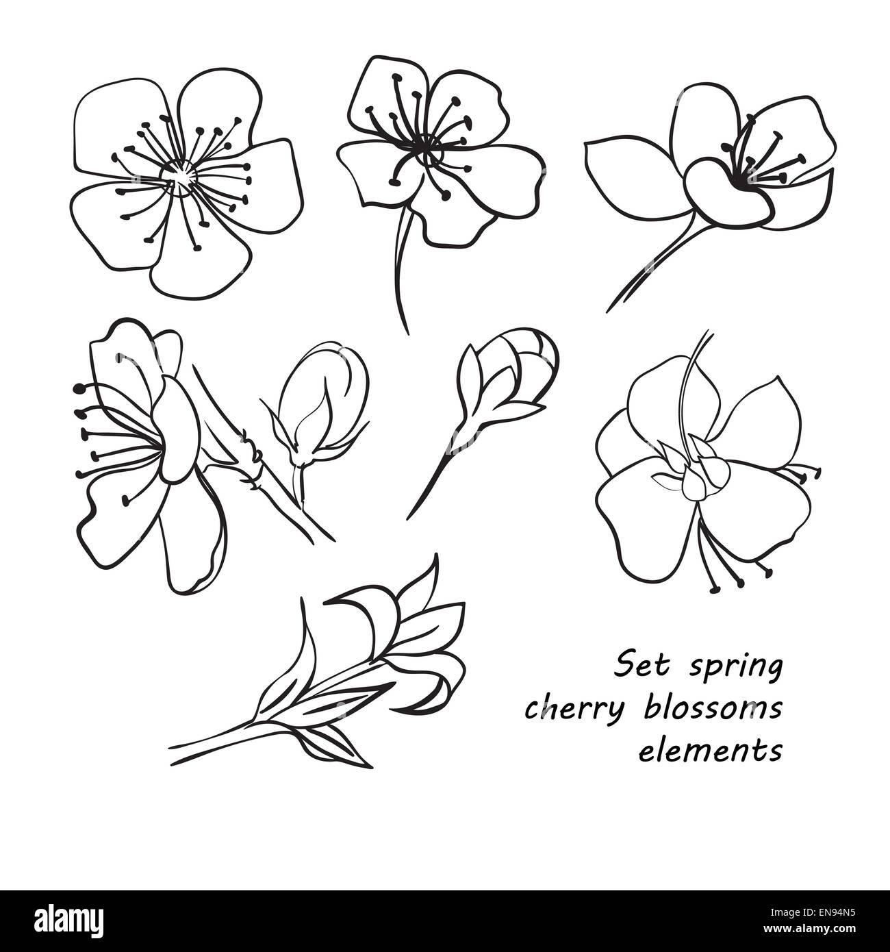 Jeu De Fleur De Cerisier Fleurs Dessin à La Main Noir Et